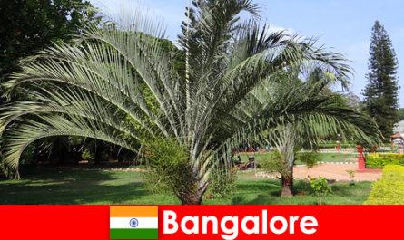 Bangalore climat plăcut pe tot parcursul anului pentru fiecare străin în valoare de o excursie