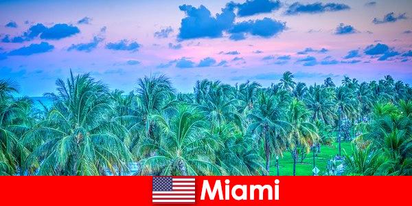 Miami natura uimitoare cu mare pustie tropicale