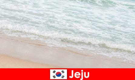 Jeju cu nisip fin și apă limpede un loc ideal pentru vacanțe de familie pe plajă