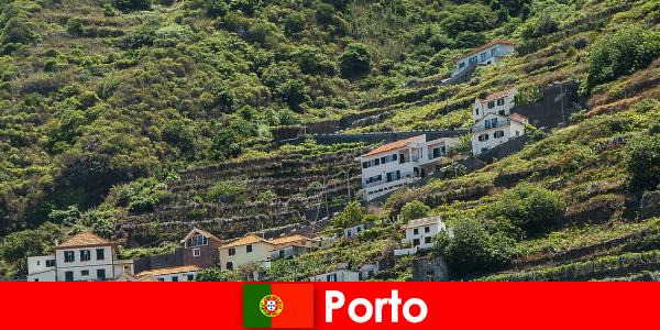 Destinatie de vacanta Porto pentru iubitorii de vin din intreaga lume
