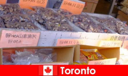 Toronto și gastronomia sa deosebit de diversă nu fac un călător să moară de foame