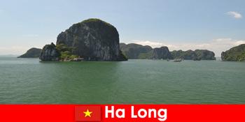 Excursii cu barca pentru turiști la giganții rock din Ha Long Vietnam