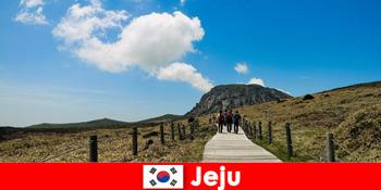 Turiștii fac drumeții prin peisajul natural fantastic din Jeju Coreea de Sud